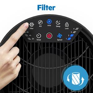 true hepa air purifier for large room
