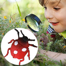 realistic insect toys