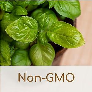 Non-GMO Seeds and Soil