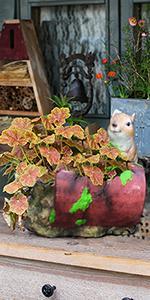 flower planter pot