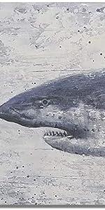 shark wall decor for beach house