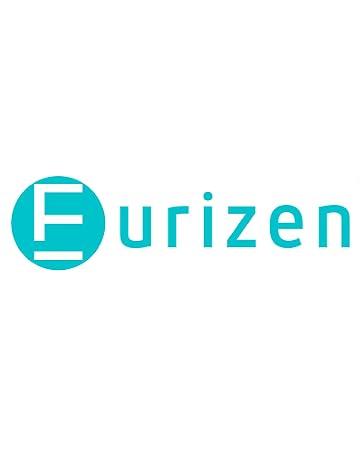 eurizen brand logo