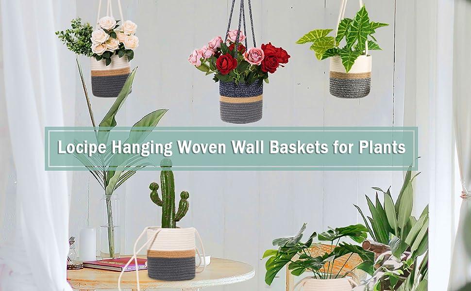 hanging pots for plants indoor indoor hanging planters