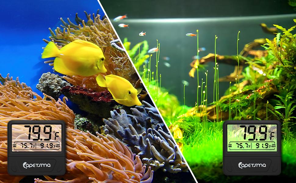 aquarium thermometer digital
