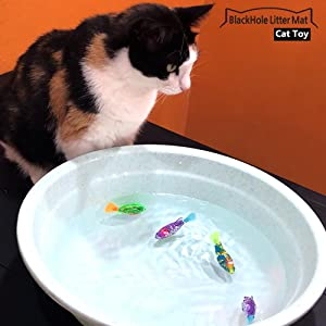 cat staring at robot fish cat toy