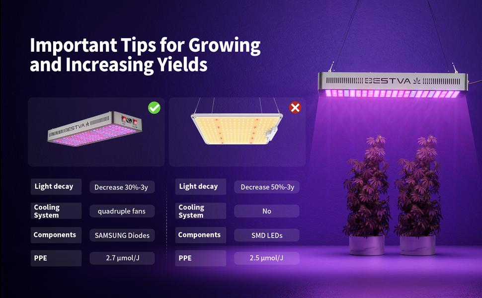 Growing Tips