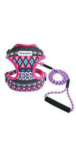 pink harness and leash set
