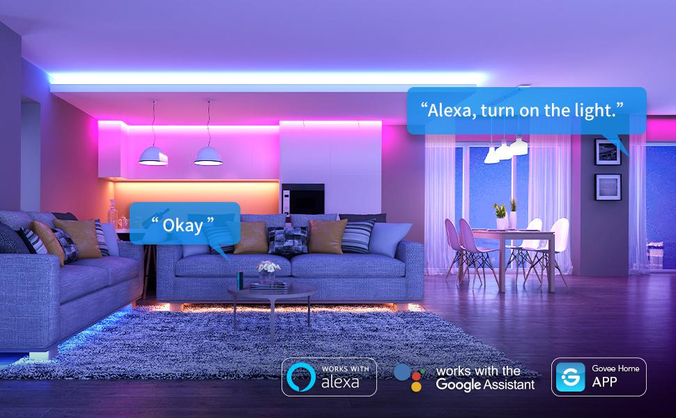 Govee LED Strip Lights Work with Alexa and Google Assistance