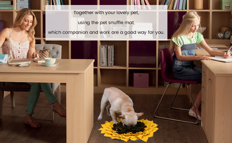 Together with your lovely pet, using the pet snuffle mat.