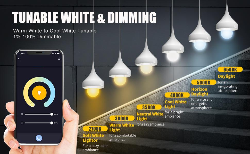 dimmable smart light bulbs