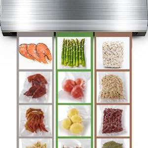 vacuum sealer; food saver