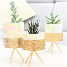 perfect for table centerpiece