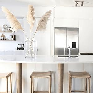 Pampas Kitchen Decor