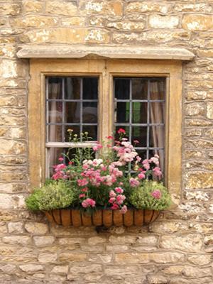 window box coco liner