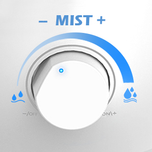 humidifier with adjustable mist output