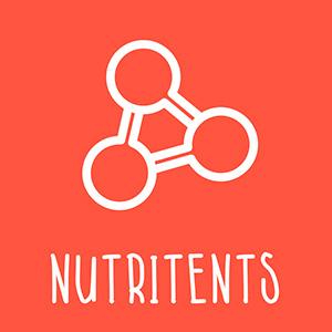 Nestle Alfamino Infant