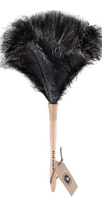car feather duster long
