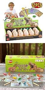 Dinosaur Eggs Dig Kit 12 Pack