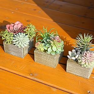 faux succulents in pots