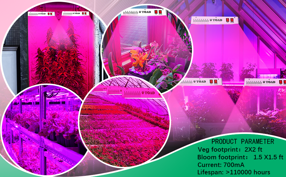 growing lights for indoor plants