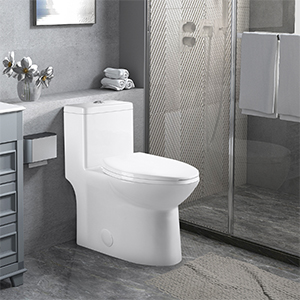 One Piece Toilet Small Compact Dual Flush