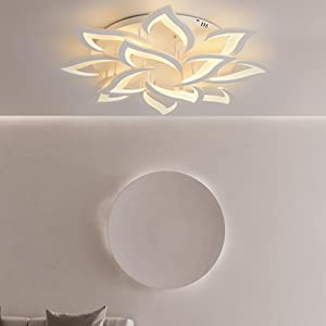 Dimmable LED Ceiling Light Modern Metal Acrylic with Remote Control