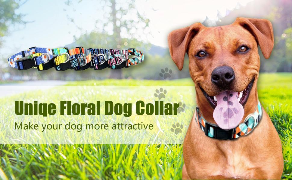 Unique floral dog collar make your dog more attractive