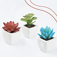 All three pots put together on a bright white background. The arrangement is not straight.