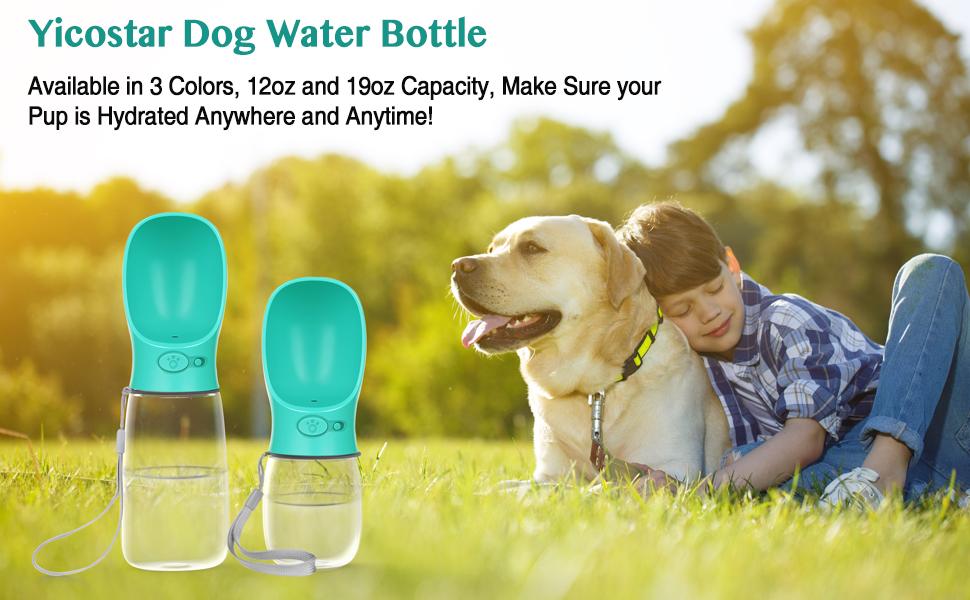 dog water bottle 19oz mint green