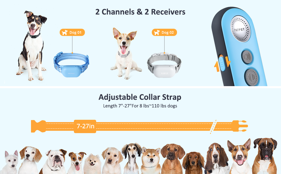 Shock collars for small dogs