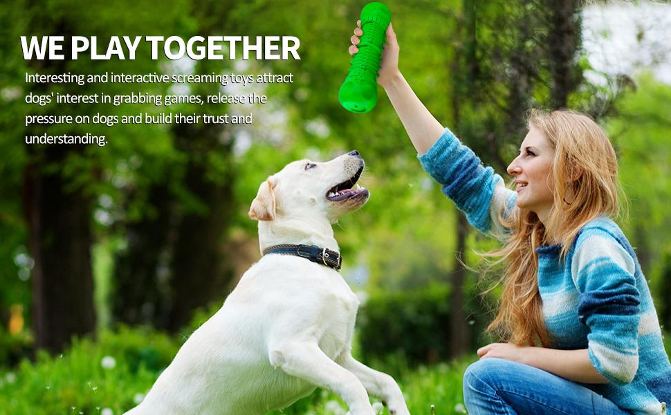 dog chew toys indestructible