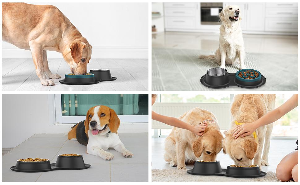 pet bowls with mat