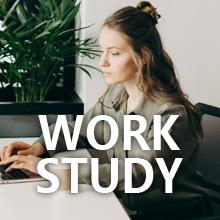 Work and study, energy boost drink, matcha green tea powder, vegan protein powder, collagen powder
