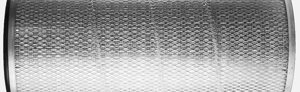 Caged filter