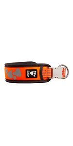 weekend warrior dog collar