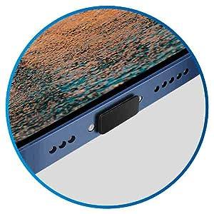 iPhone Dust Plug