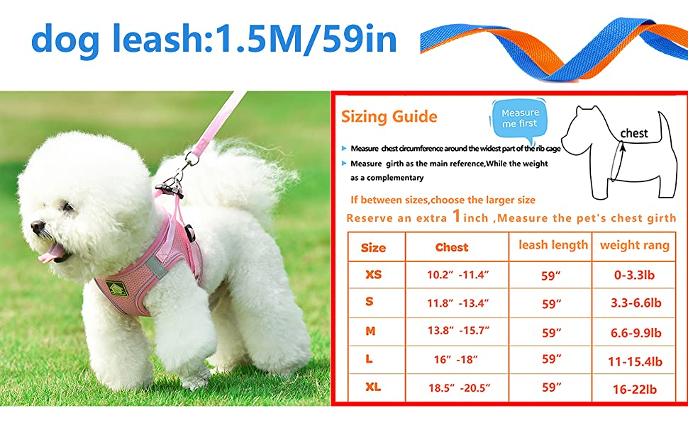 Reserve 1 inch more when measuring pet's bust circumference
