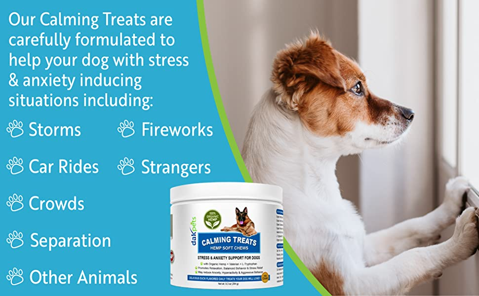 Help your dog with stress & anxiety