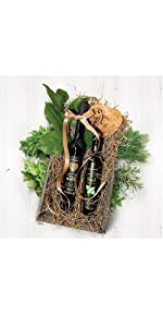 Vervana Olive Oil Lovers Gift Set with Black Label Organic EVOO and a Flavored Olive Oil