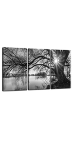 Black and White Tree in Sunrise Picture Canvas Wall Art