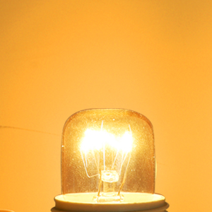 ampoule lampe de sel 15w