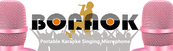 microfono karaoke,microfono senza fili,Microfono effetto eco, karaoke bambini,karaoke adulti
