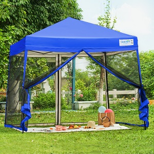 10x10 canopy with netting