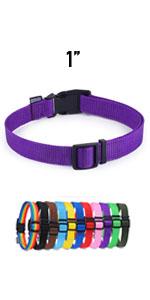 pupple dog collars, Purple cat collars