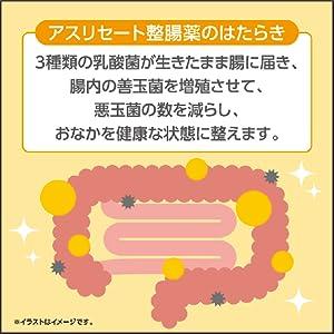アスリセート整腸薬のはたらき