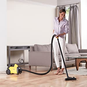 wholehome cleaning