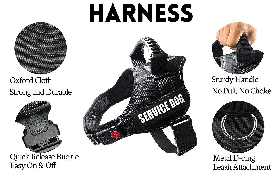 dog harness for medium dog