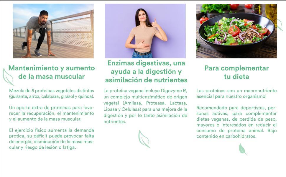 Glorioso Super Nutrients Vegan Protein Chocolate Bio 400 g - Proteína vegana en polvo - Aumenta y mantiene la masa muscular - Sin gluten ni lactosa