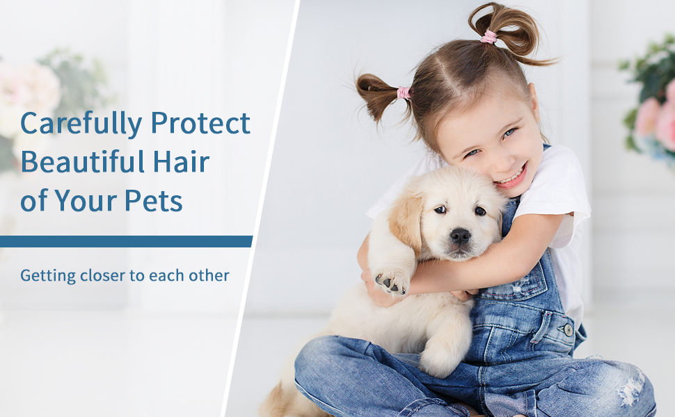 Carefully protect the beautiful hair of your pets
