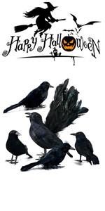 5 PCS Black Feather Crows